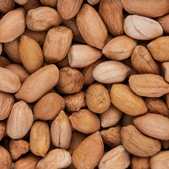 Shelled Raw Peanuts