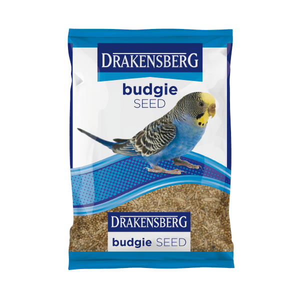 Drakensberg Budgie Seed