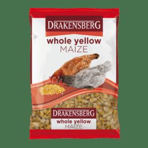 Drakensberg Whole Yellow Maize