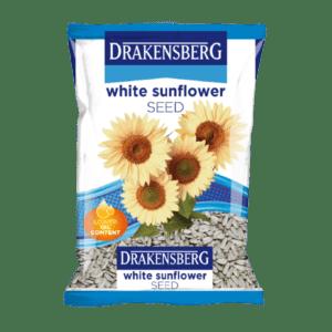 Drakensberg White Sunflower Seed