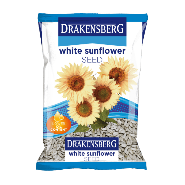 Drakensberg White Sunflower Seed